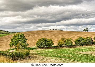 okolica, jesień, field., zaorany, angielski, typowy
