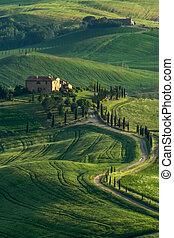 okolica, tuscany, val, d'orcia