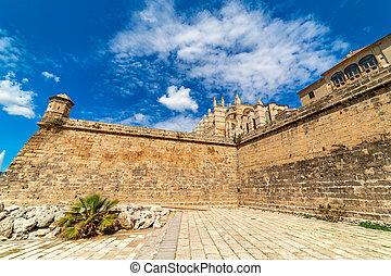 okoliczny, sky., ściana, palma, średniowieczny, pod, piękny, katedra