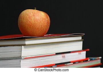 oktatás, háttér