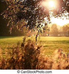 Oktoberblendung - Eine schöne Feld- und Wiesenlandschaft...