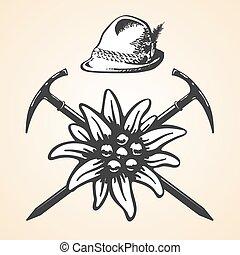 oktoberfest, edelweiss, tyrolean, vendimia, estilo, sombrero feather, alpino