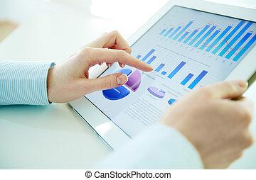 olá-tecnologia, análise