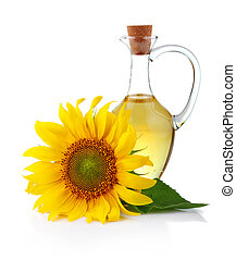 olaj, köcsög, napraforgó, elszigetelt, virág, fehér