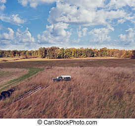 abandoned and rusty vehicles in the autumn field