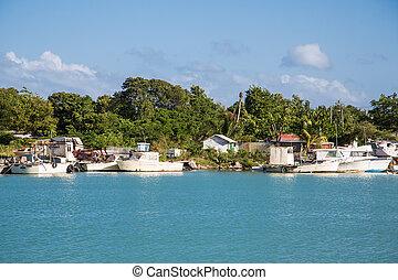 Old Abandoned Boats on Tropical Coast