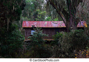 Old, abandoned building in woods