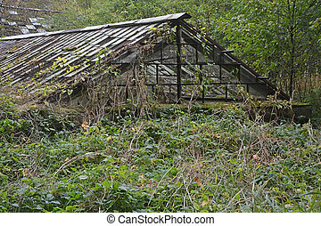 Old, abandoned greenhouse