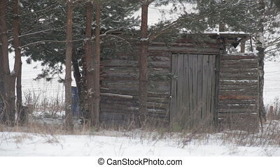 Old abandoned house in the forest, close-up, winter