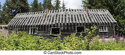 Old abandoned hut in the woods