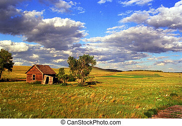 An old rundown homestead farm house in the middle of a green pasture and blue sky and some clouds