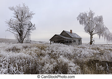 Old abandoned rural homestead in winter.