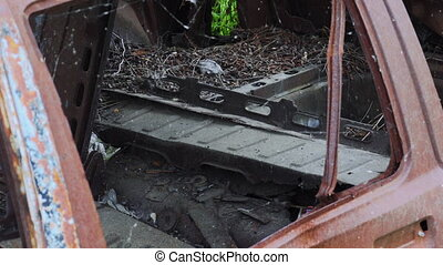Old abandoned rusty car ruined by corrosion, panning video