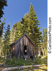Old abandoned shack in the woods in ghost town of the Lucky...