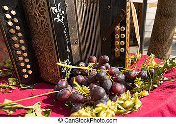 Old Accordion and Red Grape - Italy - Detail of an old...