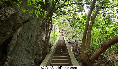 Old ancient staircase in forest - Old ancient staircase in...