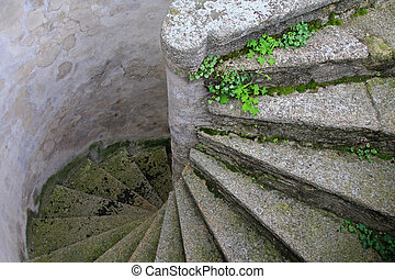 Old and Winding Concrete Stairs with small plants and Moss