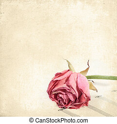 Old background with rose on a stave. Vintage floral background for any of your design
