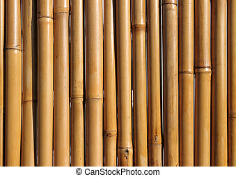 Old bamboo wood fence close up.