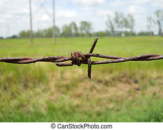 Old barbed wire with shallow depth of field (dof). Macro shooting