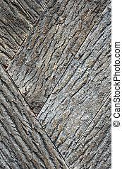 Old bark wood texture.