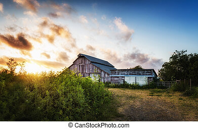 Old Barn at Sunset, Panoramic Color Image