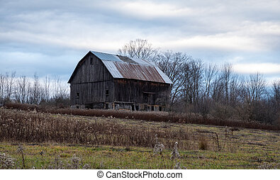 Old Barn in Field of Weeds