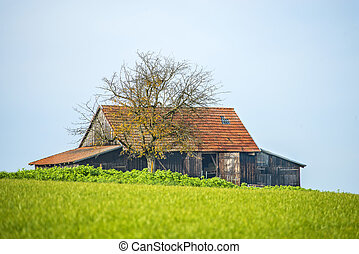 old barn in the green