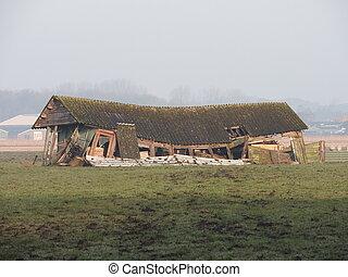 old, barn, meadow, ruin