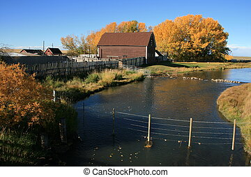 Old barn, stream and fall colours - Rural scene with stream ...