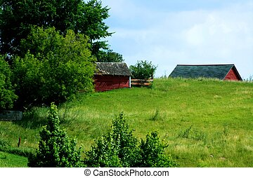 Old barns on the hill
