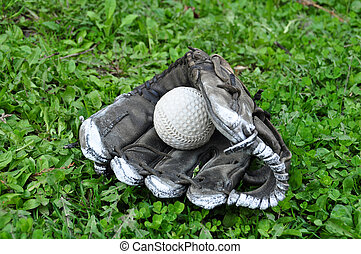 Old Baseball in a Glove