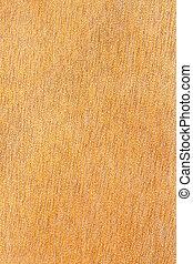 Old beech wood texture