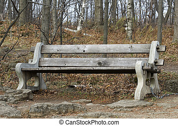 old bench in the forest