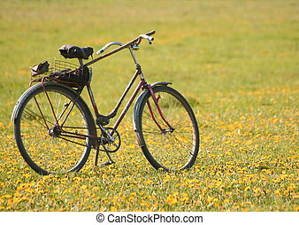 Old bicycle in the field