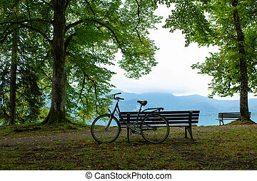 Old bike and Wooden bench by the lake and blue sky next to the trees