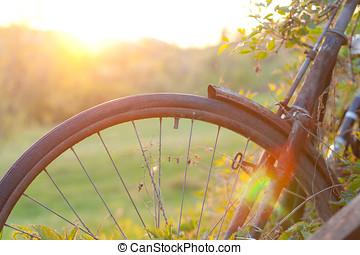 old bike - Old bike at sunset.