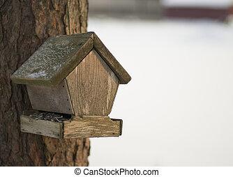 Old bird feeder