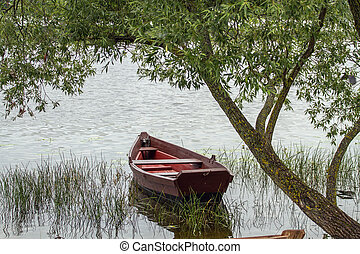 Old boat in lake