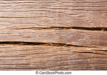 Old bog oak wood, texture grunge background.