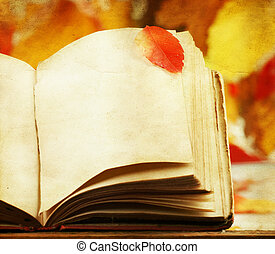 Old book and colorful autumn leaves