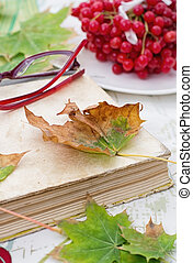 old book spangled leaves