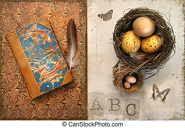 Old books with bird nests on grunge