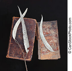 Old books with dead eucalyptus leaves