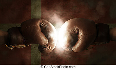 Boxing Gloves with the Flag of Denmark
