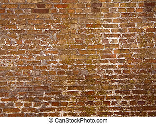 Old Brick - This is a background shot of a very old brick...