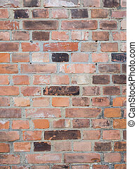 Old Brick Wall In Different Colors