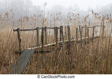 Old bridge leading through the reed