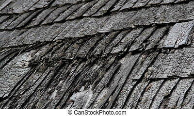 Old broken cedar wooden shake shingle roof of the house -...