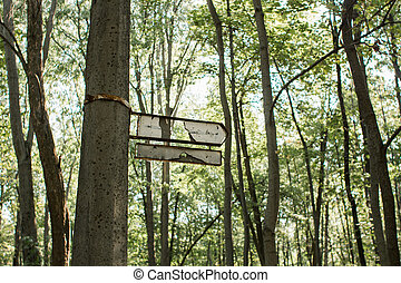 old broken signpost on a tree in the forest